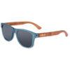 EarthHero - India Polarized Sunglasses 1