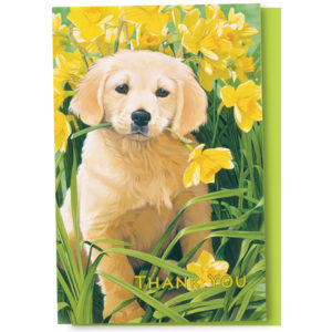 EarthHero - Golden Puppy Thank You Cards 1