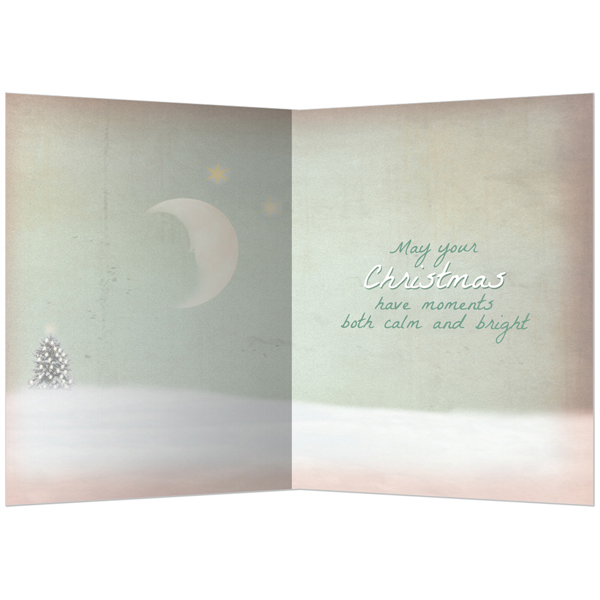 EarthHero - Holy Night Christmas Cards(10 Pk) 2