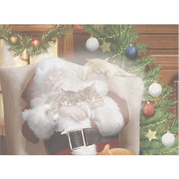 EarthHero - Cat Nap with Santa Christmas Cards (10 Pk)  3