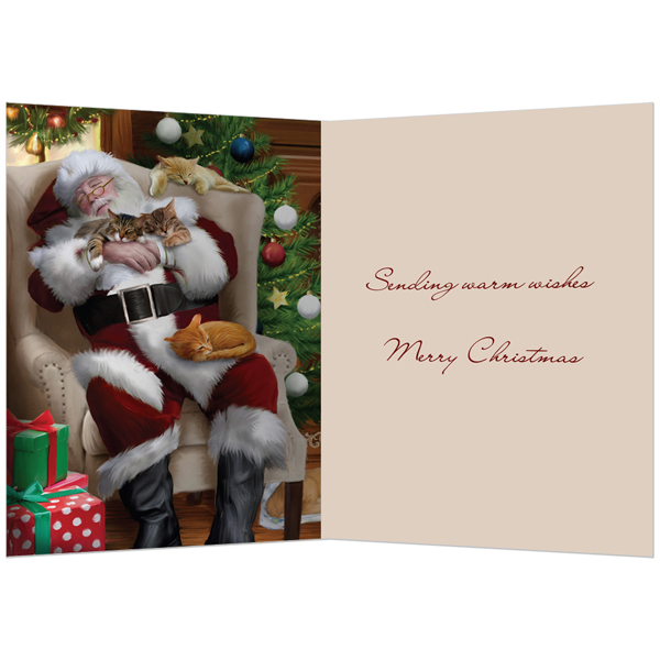 EarthHero - Cat Nap with Santa Christmas Cards (10 Pk)  2