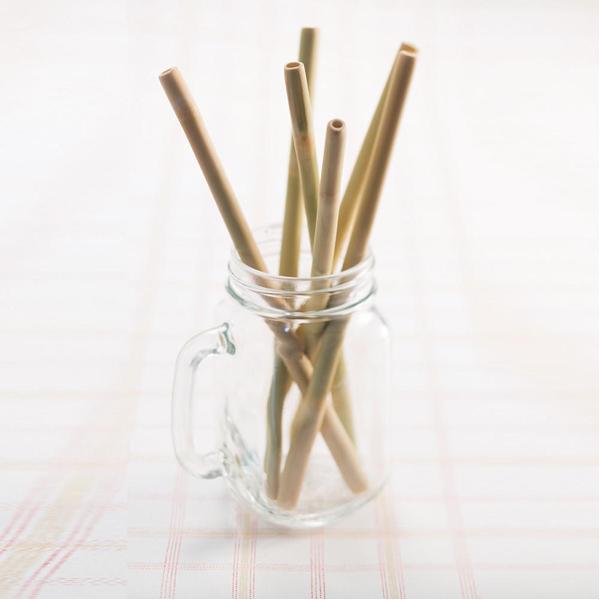 EarthHero - Bamboo Straws - 6pk - 4