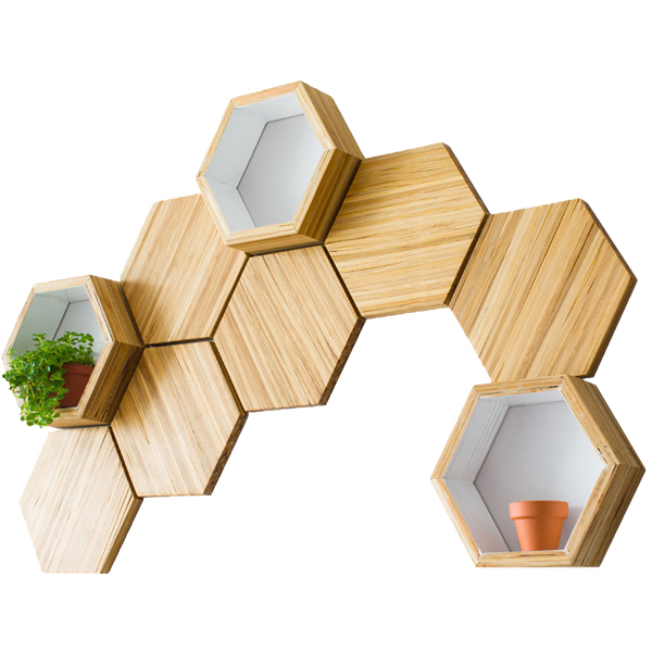 EarthHero - Hexagon Bamboo Shelf Starter Set 1