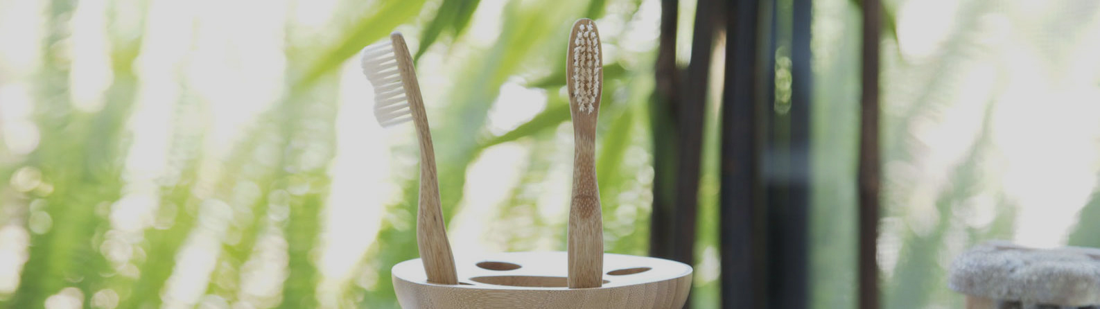Product Breakdown: Brush with Bamboo Toothbrushes