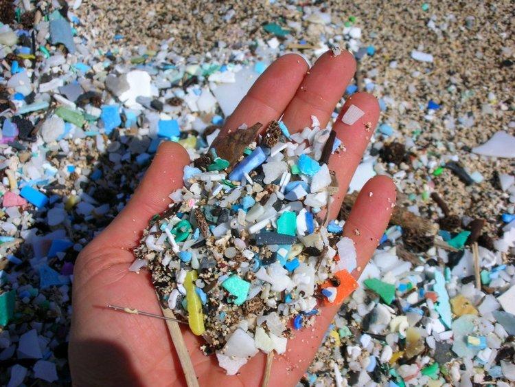 plastic-straw-microplastics