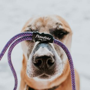 Reclaimed Sailcloth Dog Leash | Upcycled & Recycled Products | EarthHero.com