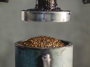 Seed Phytonutrients | EarthHero | Product Breakdown