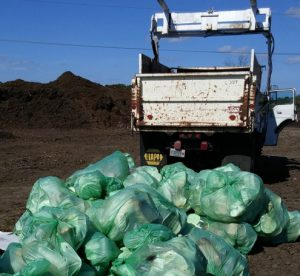 EarthHero   BioBag Plant Based Plastic   7 Steps to Ditch Plastic