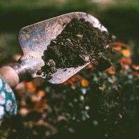 How-To: Compost