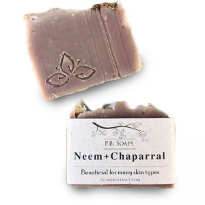 EarthHero - Neem + Chaparral Natural Soap Bar - 1