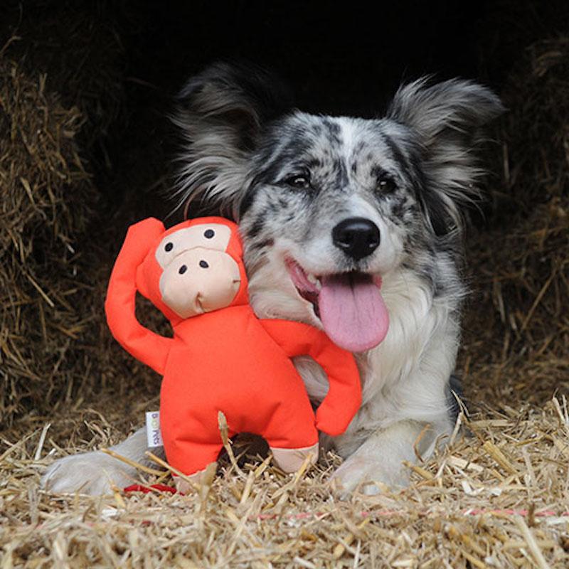 EarthHero - Monkey Plush Dog Toy 4