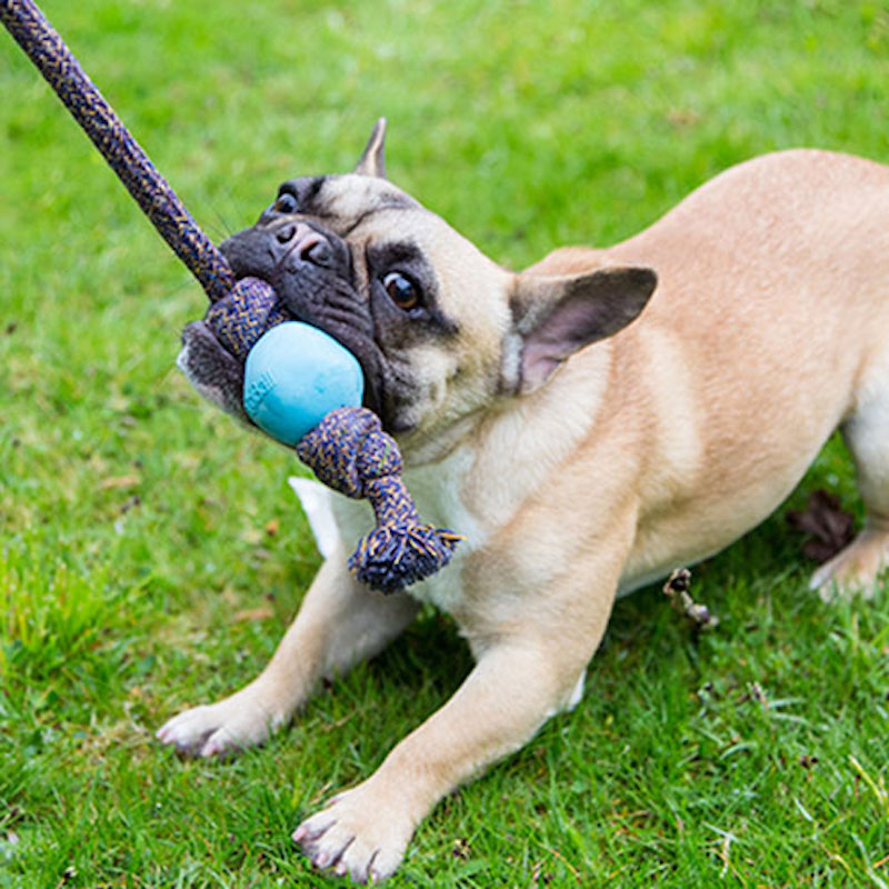 EarthHero - Natural Rubber Rope Ball Dog Toy 2