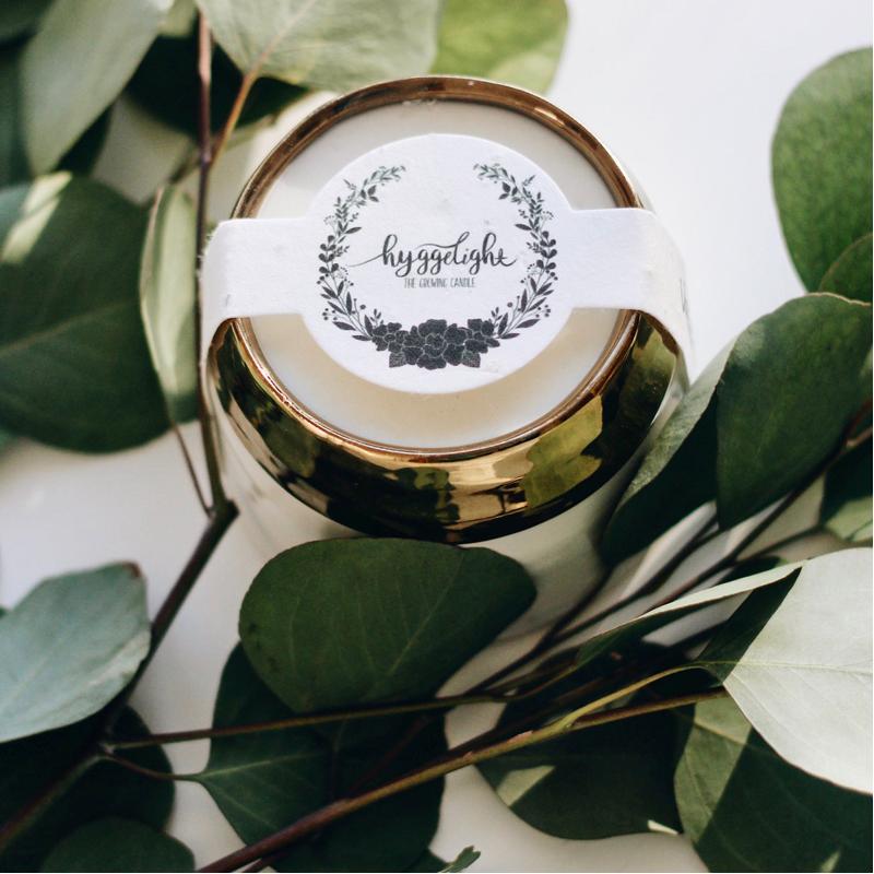 EarthHero - Clara Vegan Soy Candle + Planter - 5