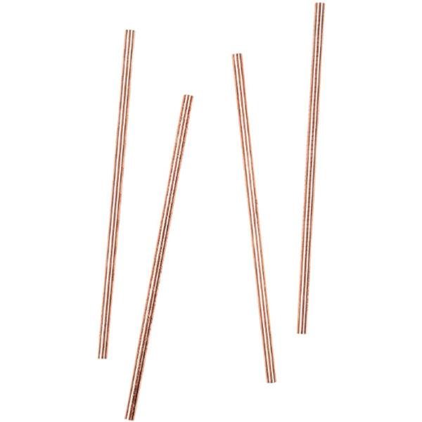 EarthHero - Adventure Set Copper Reusable Straws - 2