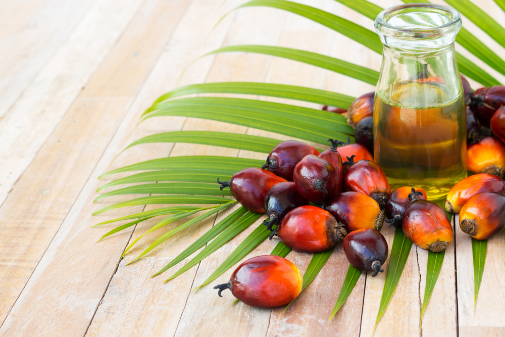 sustainable palm oil, palm oil, sustainable, EarthHero, RSPO, eco friendly