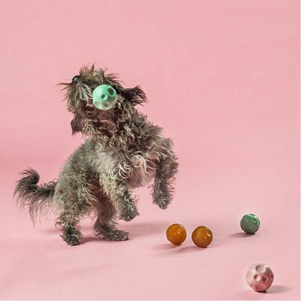 EarthHero - Moon Ball Activity Dog Toy - 2