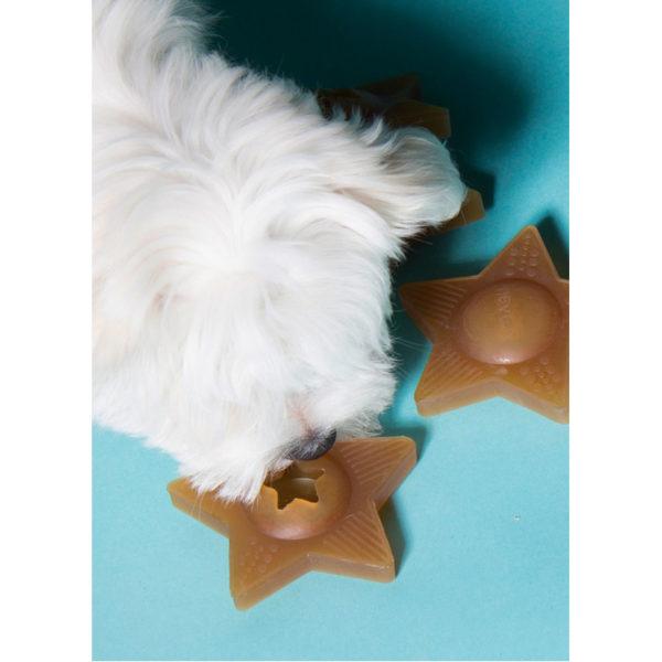 EarthHero - Star Treat Activity Dog Toy - 4
