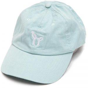 EarthHero - Succulent Hat - 1