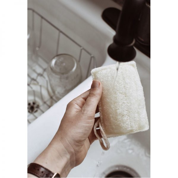 EarthHero - Kitchen Loofah Sponge 3pk - 2