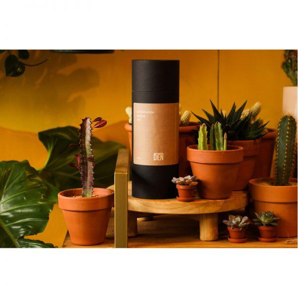 EarthHero - Sustainable Cactus Soil Mix - 3