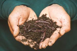 Home Composting | EarthHero Blog