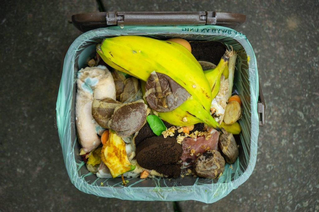 Home Compost | EarthHero Blog