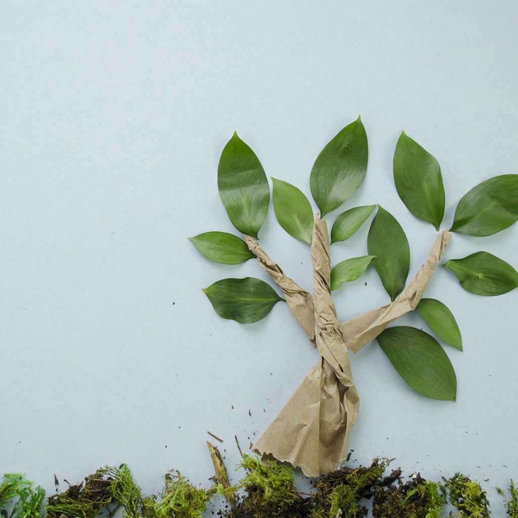 10 Ways to Celebrate Earth Month | EarthHero